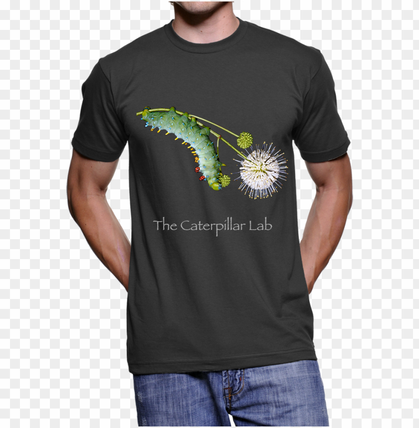 free PNG adult unisex cecropia t-shirt PNG image with transparent background PNG images transparent