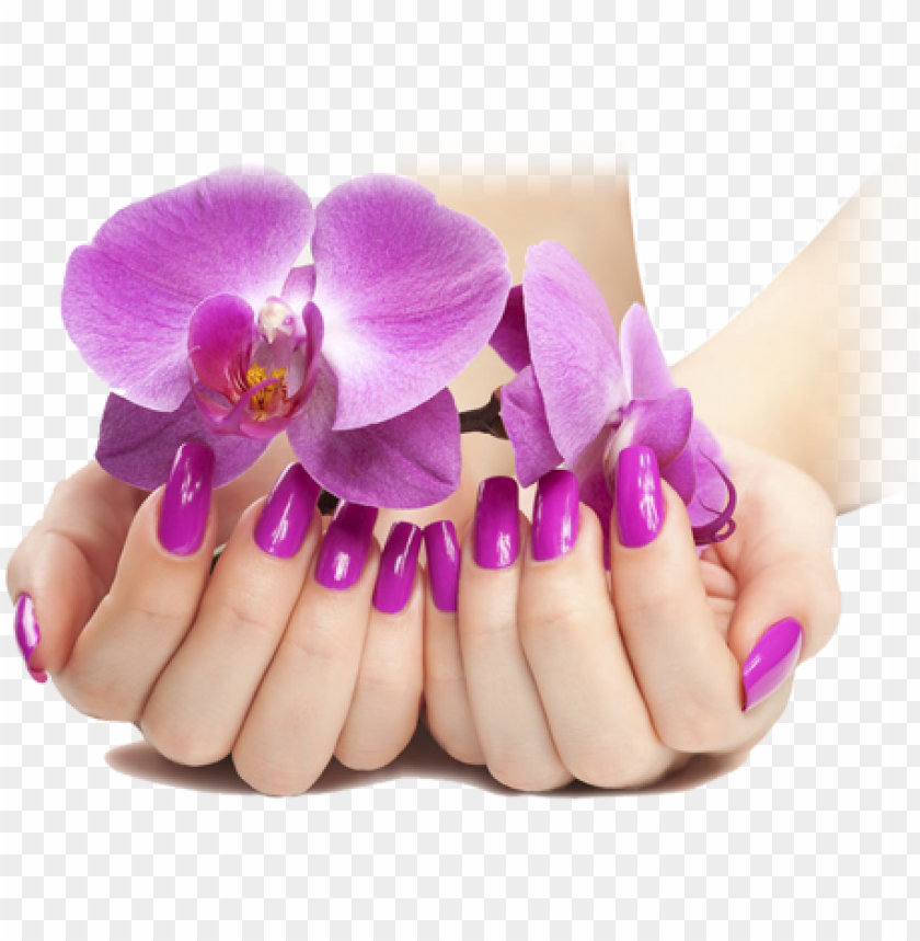 free PNG ails manicure png - nails PNG image with transparent background PNG images transparent