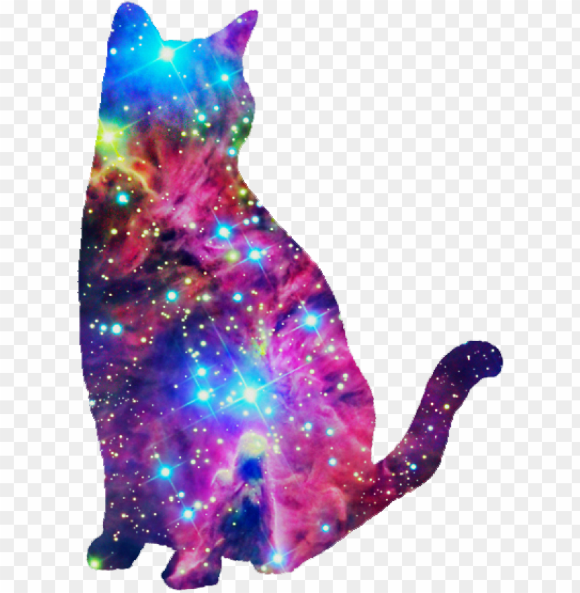 free PNG alaxy cat, i don't know why i like this so much haha - galaxy cat black background PNG image with transparent background PNG images transparent