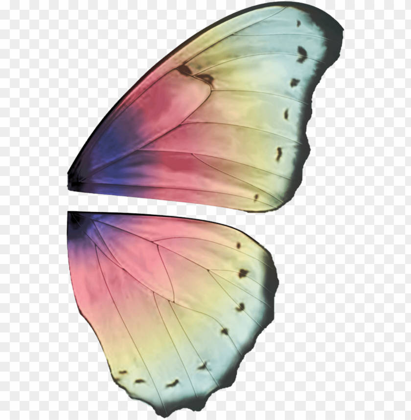 free PNG ali fate - butterfly wings high resolutio PNG image with transparent background PNG images transparent