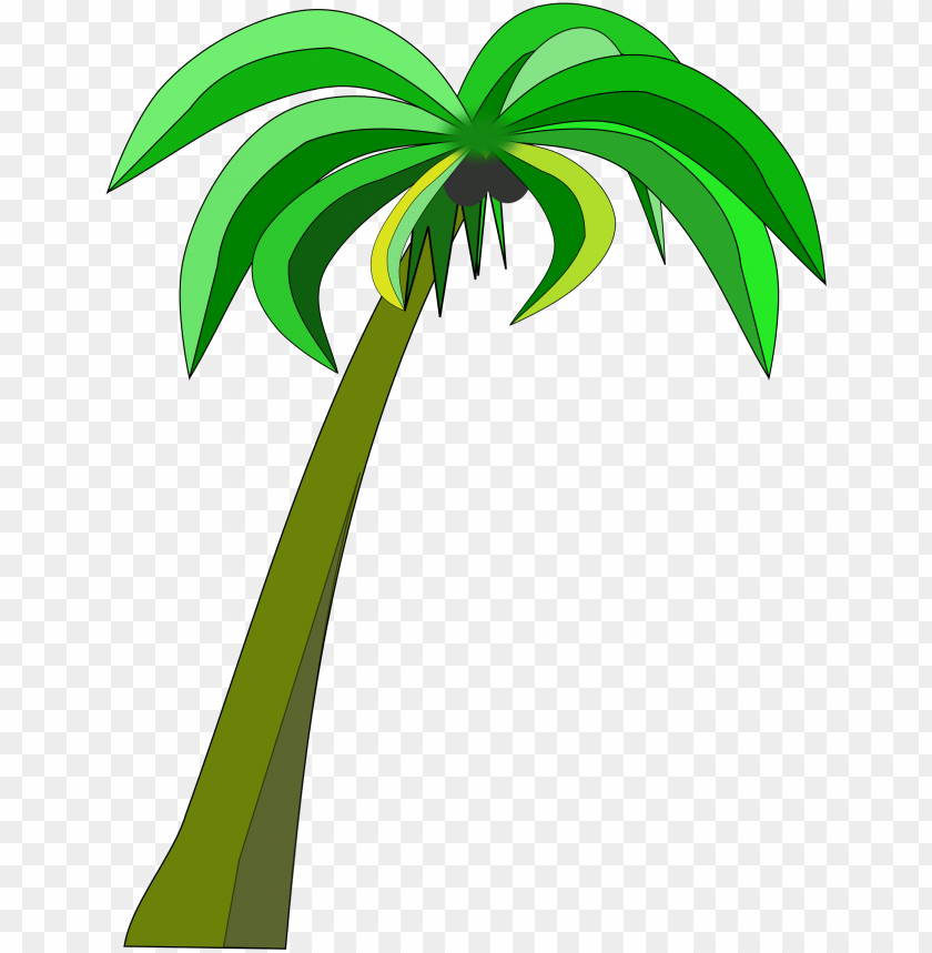 free PNG alm or coconut tree clipart black and white download - coconut palm tree clipart PNG image with transparent background PNG images transparent