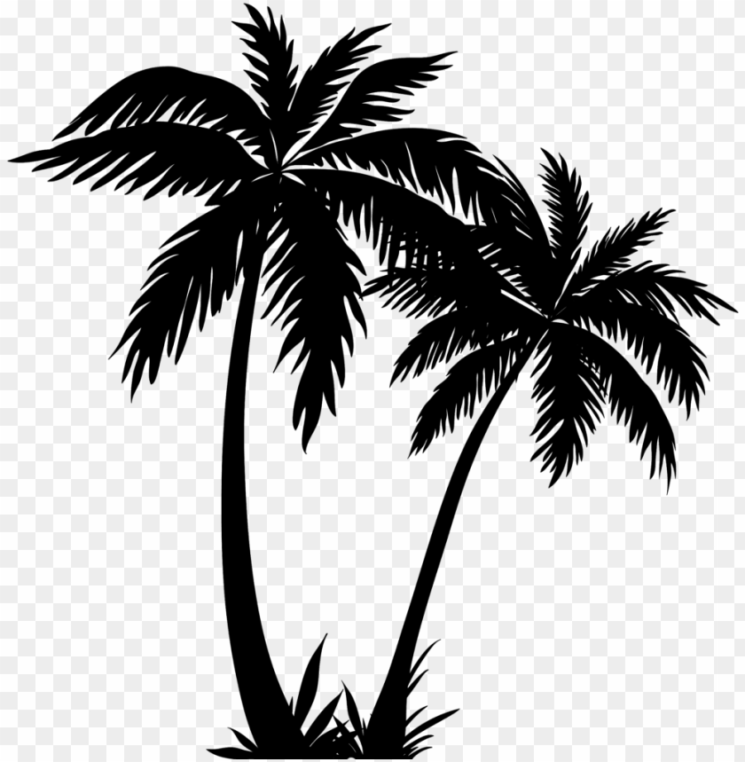 free PNG alm tree clipart - palm tree line art PNG image with transparent background PNG images transparent