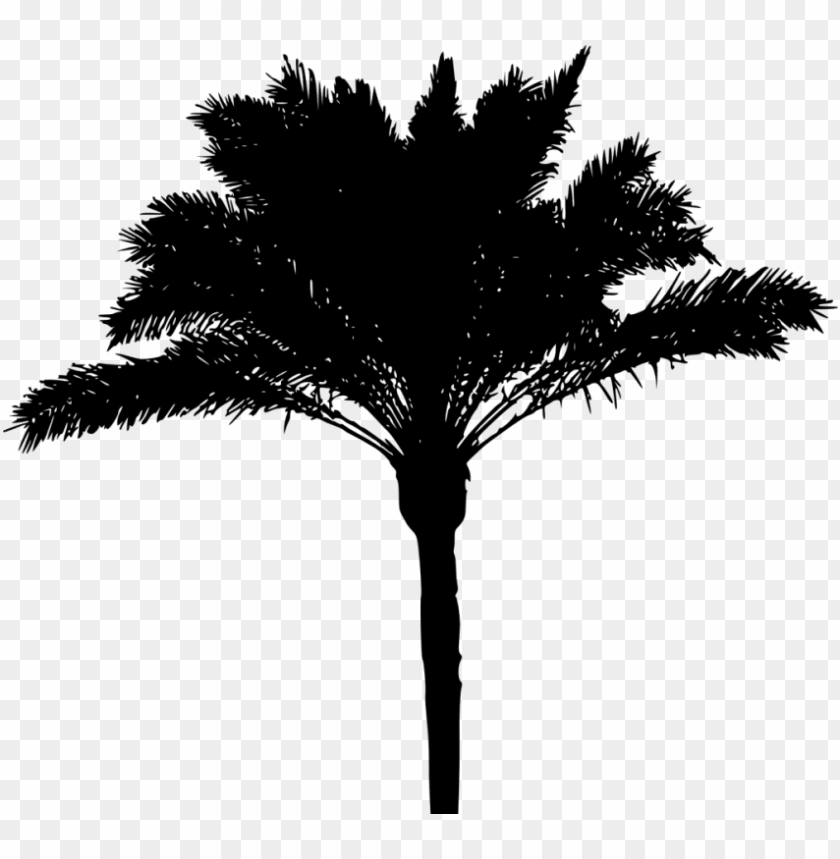 free PNG alm tree png download - palm tree silhouette PNG image with transparent background PNG images transparent