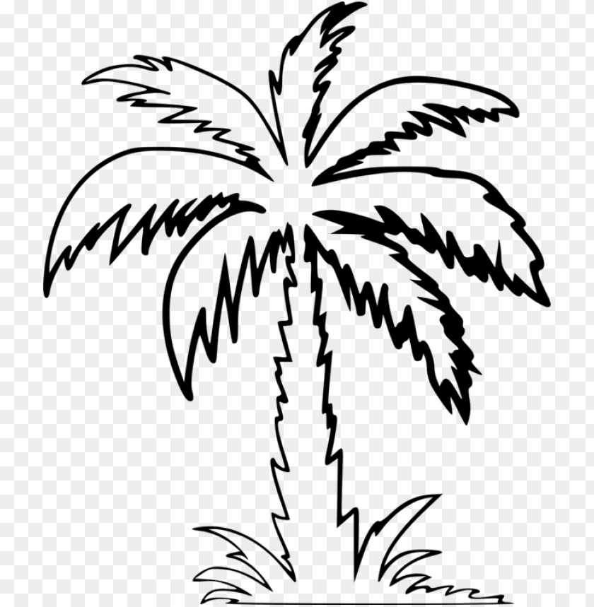free PNG alm trees drawing computer icons silhouette - palm tree clipart outline PNG image with transparent background PNG images transparent