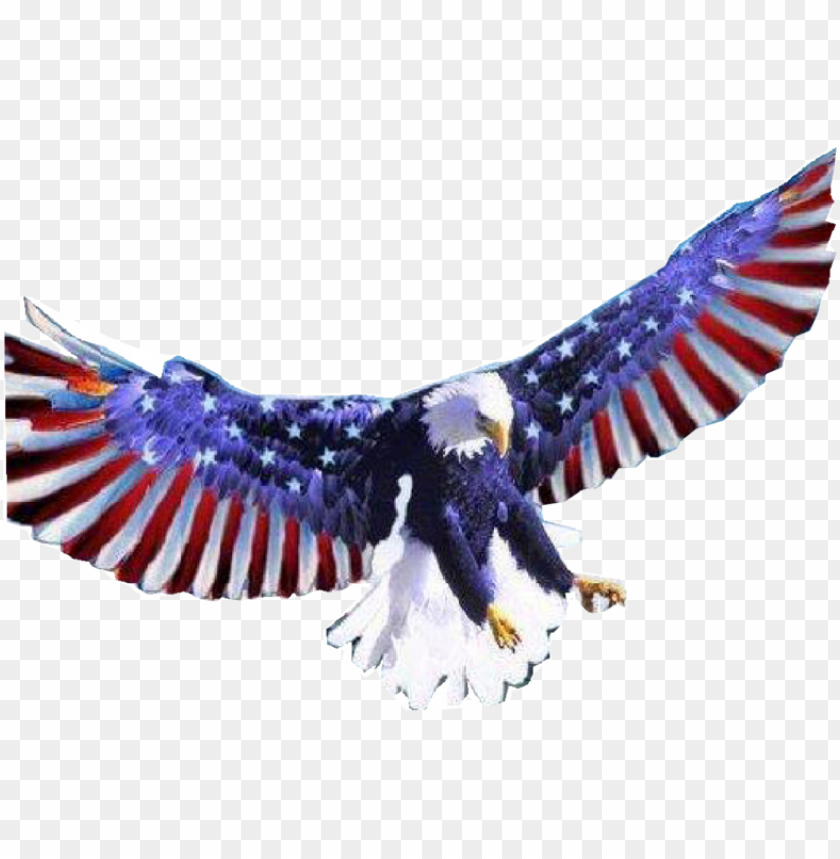 free PNG american flag eagle png - american flag bald eagle transparent PNG image with transparent background PNG images transparent