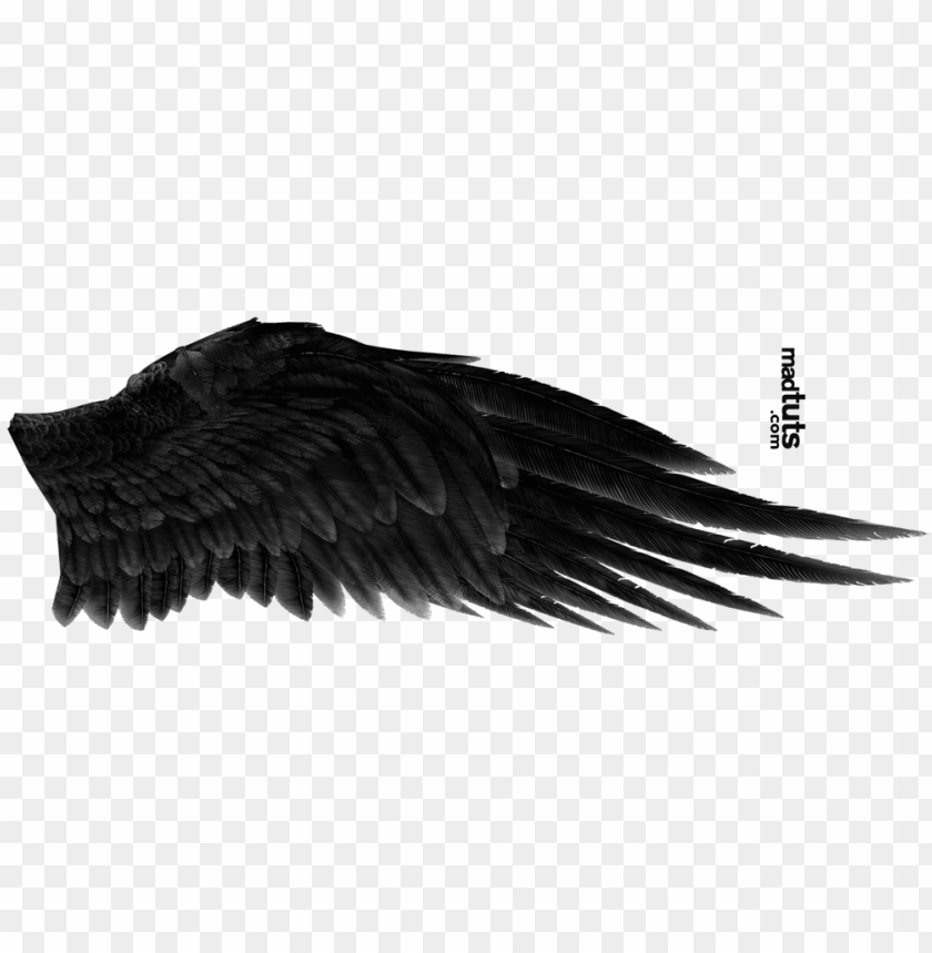 free PNG angel wing png - black angel wings PNG image with transparent background PNG images transparent