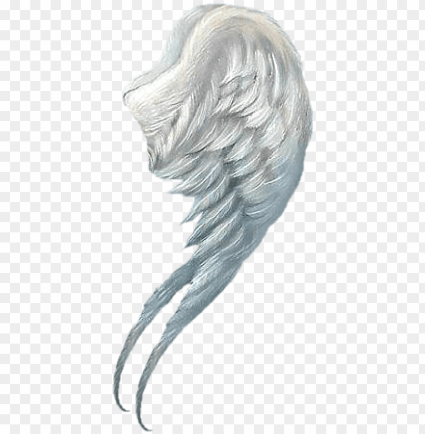 free PNG angel wings png - little angel wall calendar PNG image with transparent background PNG images transparent
