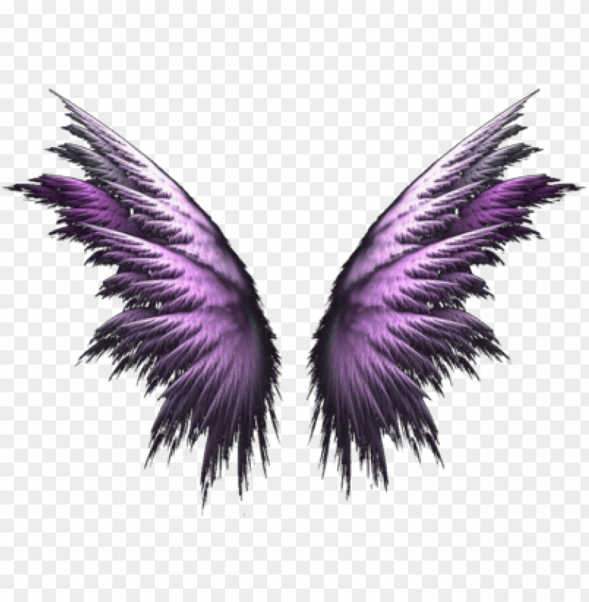 free PNG angel wings png - purple angel wings PNG image with transparent background PNG images transparent