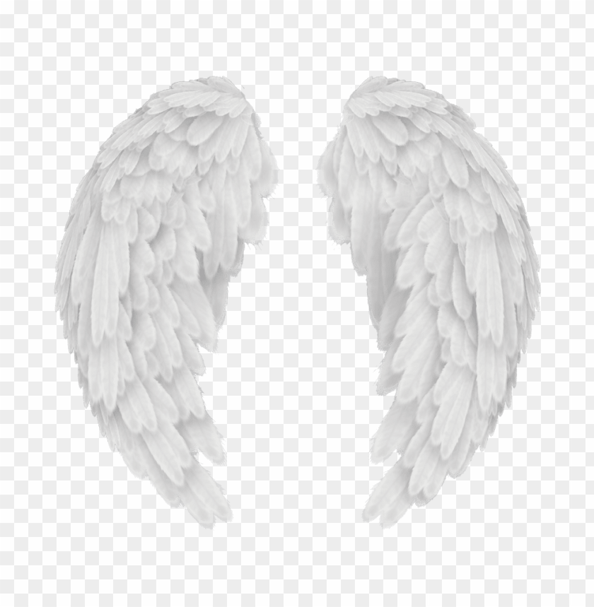 free PNG angels in america wings - angel wings png transparent PNG image with transparent background PNG images transparent