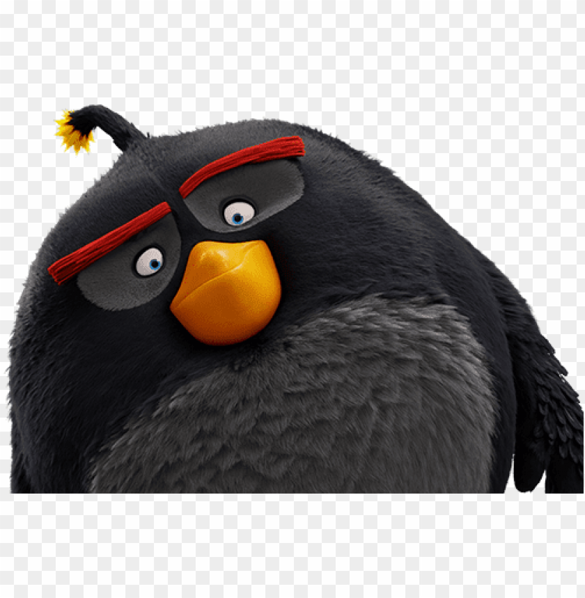 free PNG angry birds negro 2016 - storks and angry birds movie poster PNG image with transparent background PNG images transparent