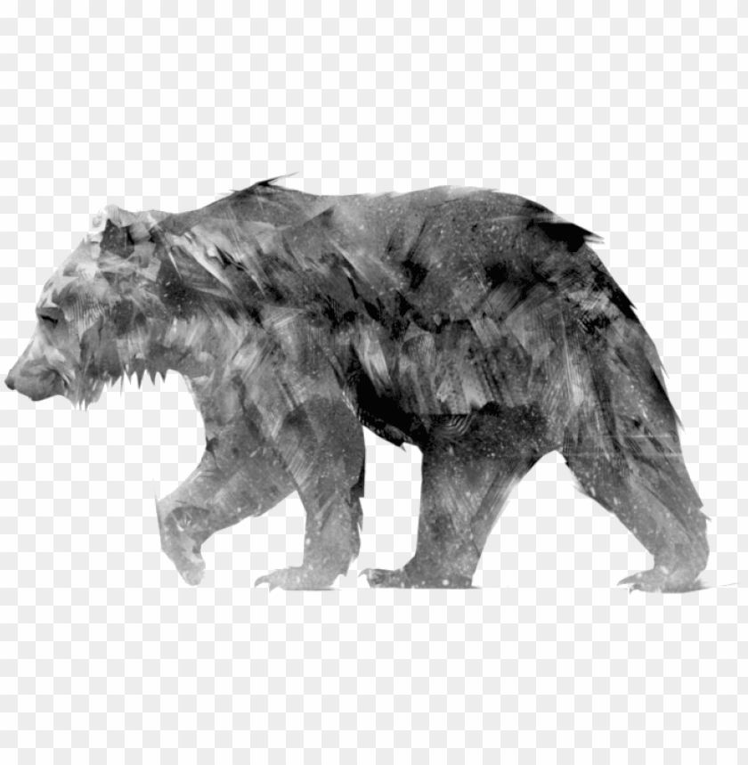 free PNG animus - grizzly bear PNG image with transparent background PNG images transparent