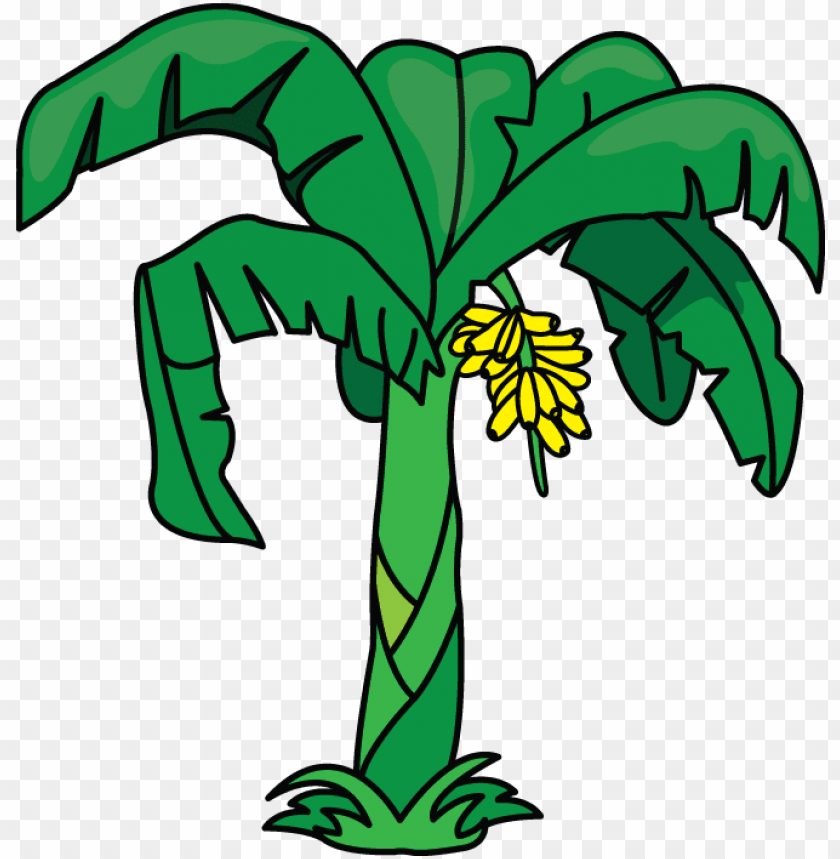free PNG another tutorial in flowers and plants category is - banana tree drawing easy PNG image with transparent background PNG images transparent