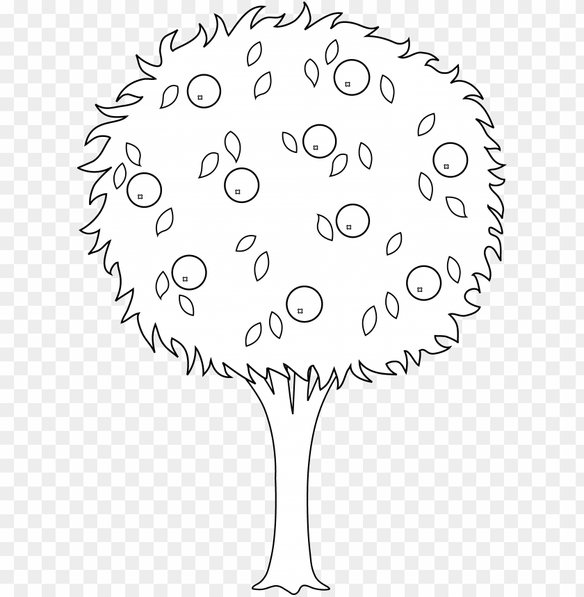 free PNG apple drawing banana - orange tree black and white PNG image with transparent background PNG images transparent