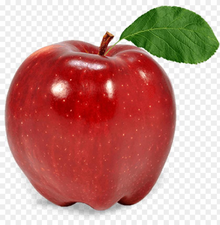 free PNG apple fruit png - apple fruit transparent PNG image with transparent background PNG images transparent