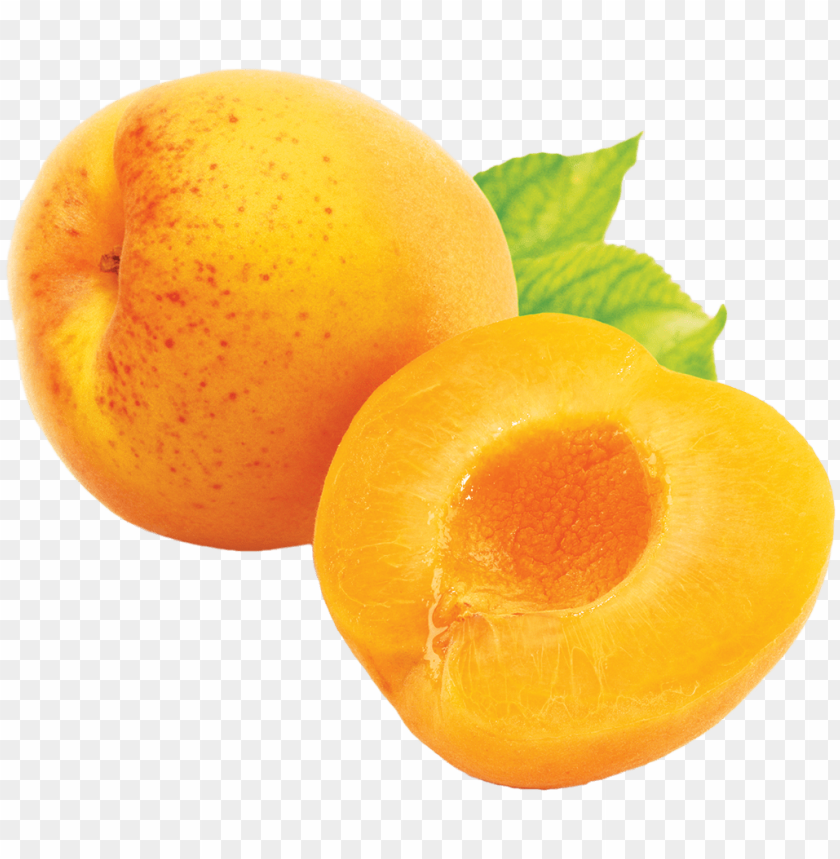 free PNG Download apricot png images background PNG images transparent