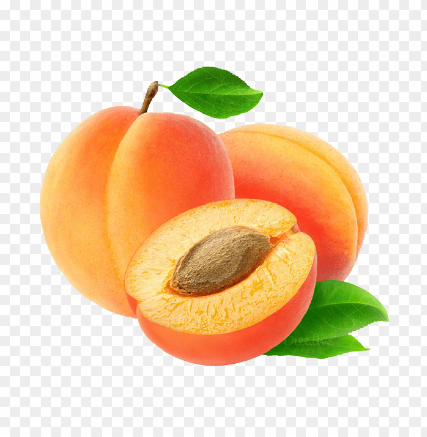 free PNG apricot  image png - Free PNG Images PNG images transparent
