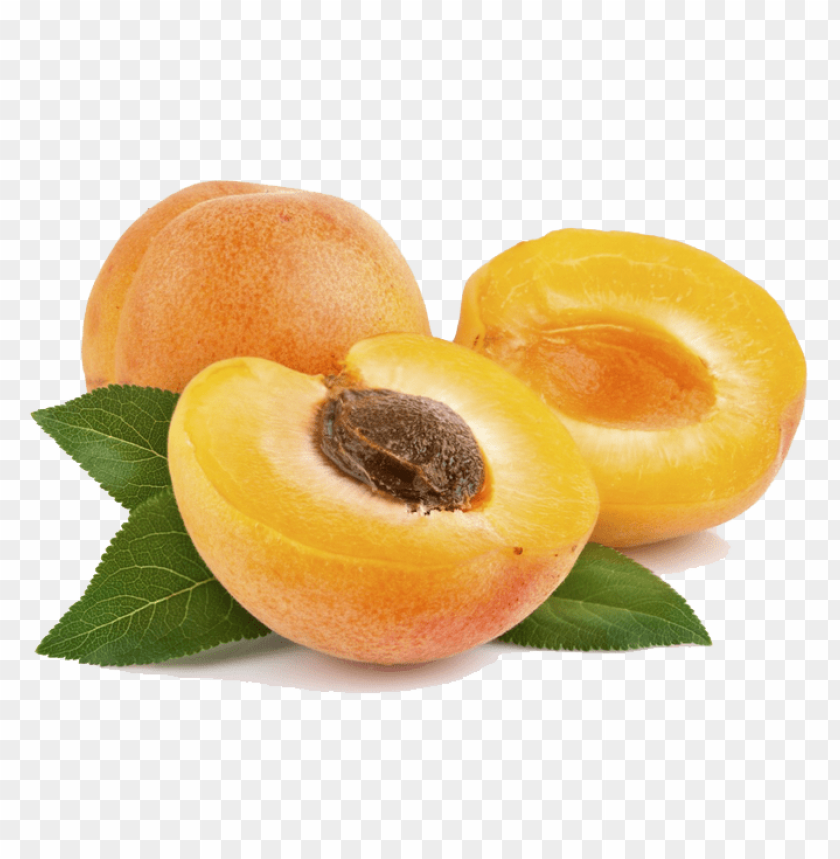 free PNG apricot png file png - Free PNG Images PNG images transparent
