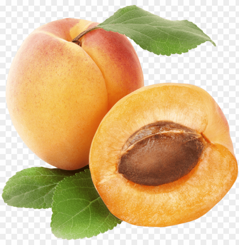 free PNG apricots png clipart best web clipart - rex orange county apricot PNG image with transparent background PNG images transparent