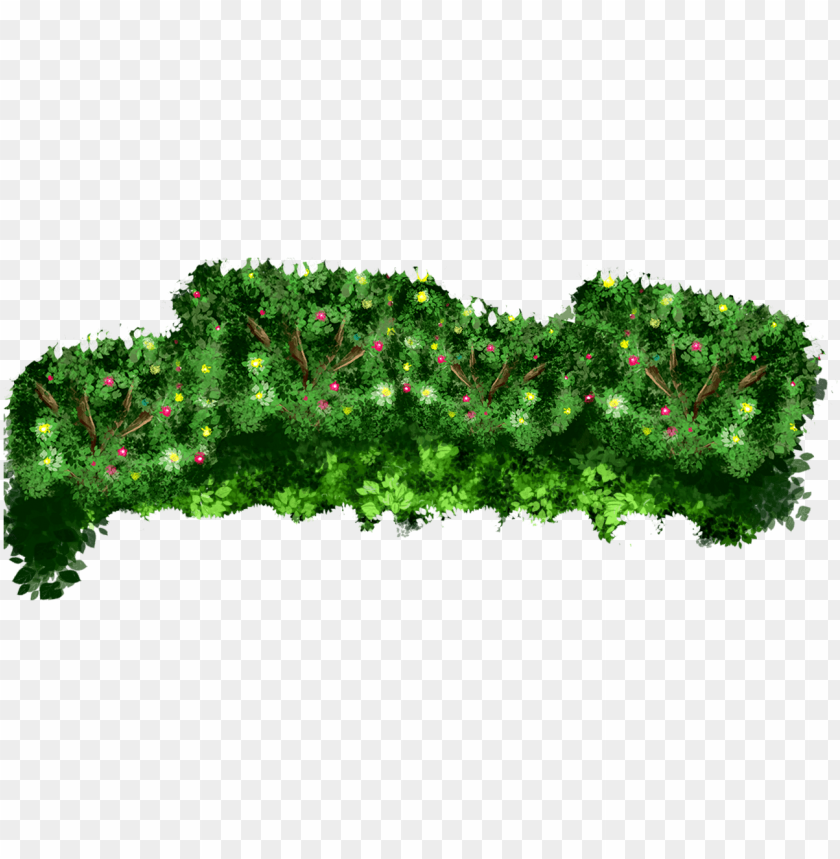 free PNG arena events events bushes - larch PNG image with transparent background PNG images transparent