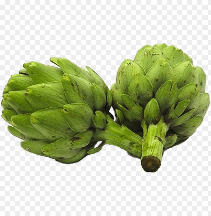 free PNG Download artichokes png pic png images background PNG images transparent