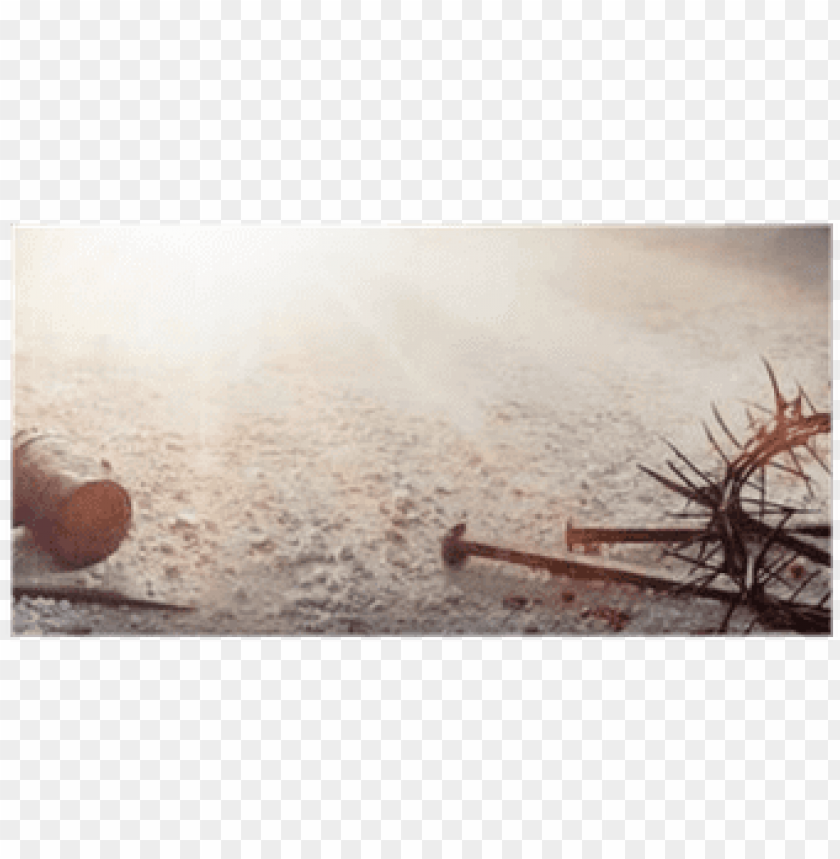 free PNG assion of jesus christ - passion of jesus christ hammer and bloody nails and PNG image with transparent background PNG images transparent