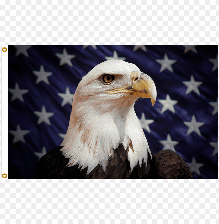 free PNG atriotic stars & stripes american eagle flag - eagle fla PNG image with transparent background PNG images transparent
