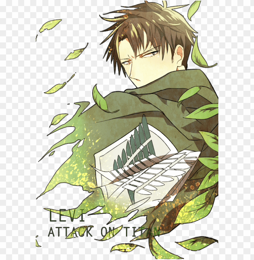 Attack On Titan Attack On Titan Levi Needlefelted Png Image With Transparent Background Toppng