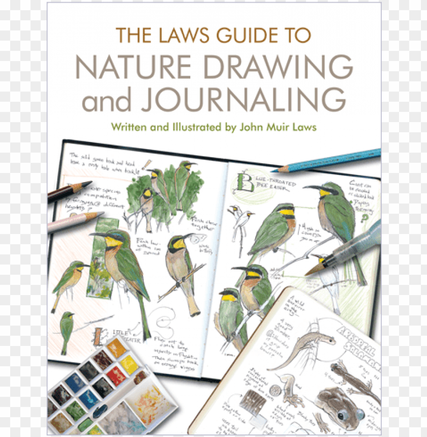 free PNG ature drawing and journaling - laws guide to nature drawing and journaling (paperback) PNG image with transparent background PNG images transparent