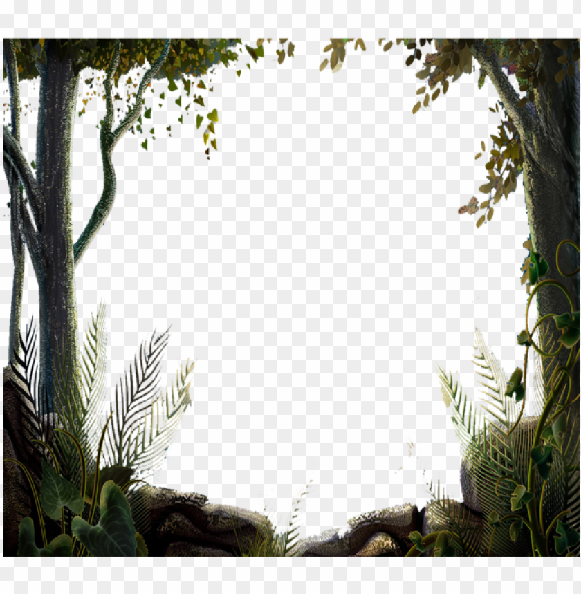 free PNG ature tree forest border vector, tree, nature design, - nature tree border desi PNG image with transparent background PNG images transparent