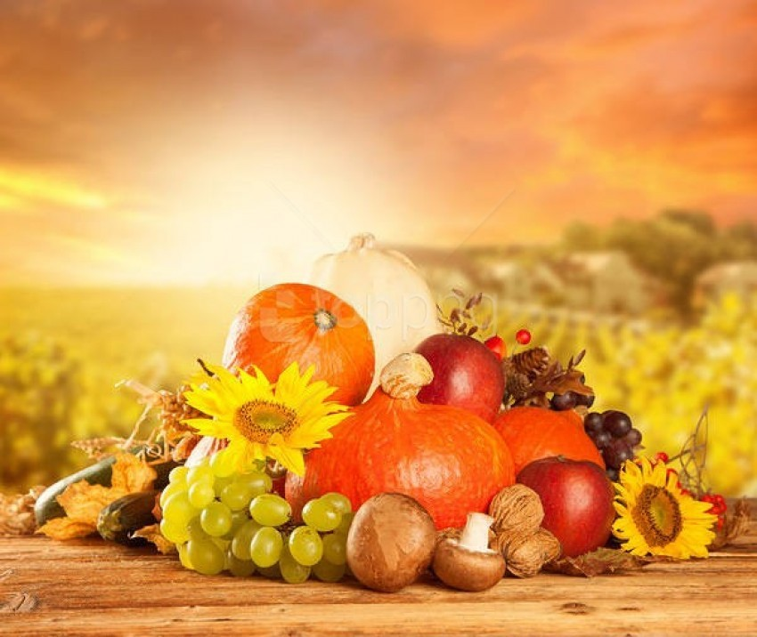 autumn harvest background best stock photos | TOPpng