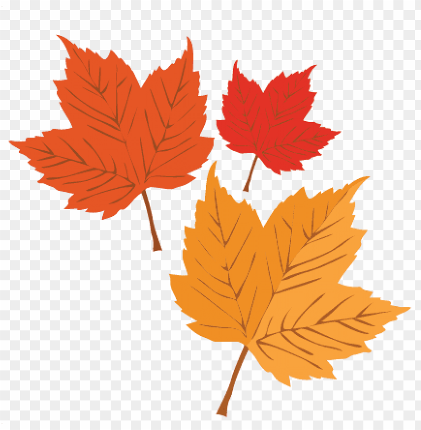 free PNG autumn leaves svg scrapbook cut file cute clipart files - maple leaf PNG image with transparent background PNG images transparent