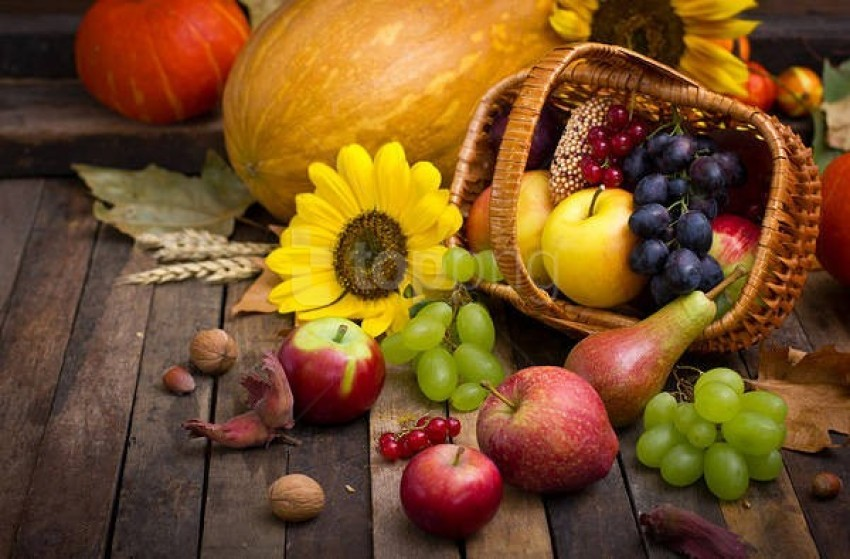 free PNG autumnwith pumpkin and fruit basket background best stock photos PNG images transparent