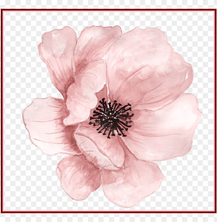 free PNG awesome flower watercolor painting clip art pink hand - transparent watercolor flower PNG image with transparent background PNG images transparent