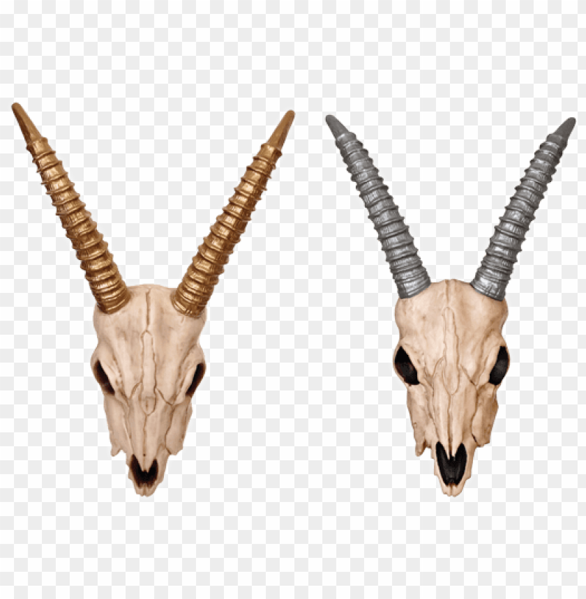 free PNG azelle skull-gold/silver - boneyard halloween ram head with bronze horns PNG image with transparent background PNG images transparent