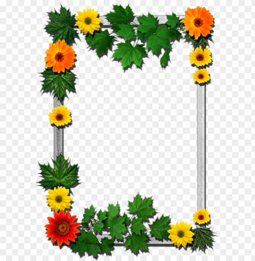 free PNG b *✿* borders for paper, borders and frames, halloween - download free flower frame PNG image with transparent background PNG images transparent
