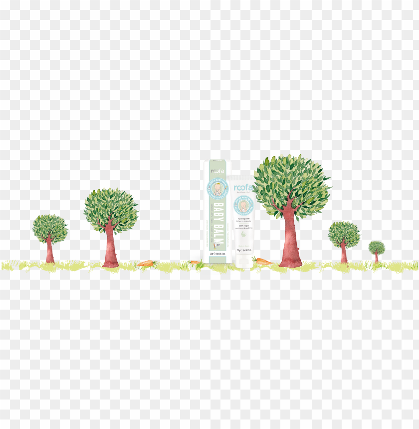 free PNG baby - tree PNG image with transparent background PNG images transparent