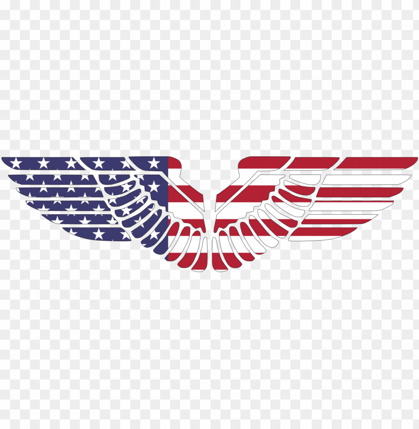 free PNG bald eagle flag of the united states bird - american eagle wings PNG image with transparent background PNG images transparent
