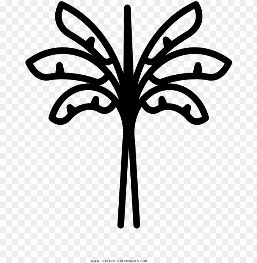 free PNG banana tree coloring page - banana tree icon PNG image with transparent background PNG images transparent