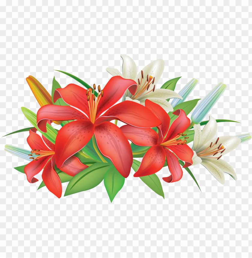 Lily Flower Clip Art