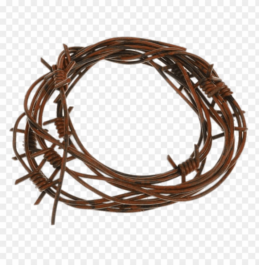 free PNG barbed wire fake PNG image with transparent background PNG images transparent