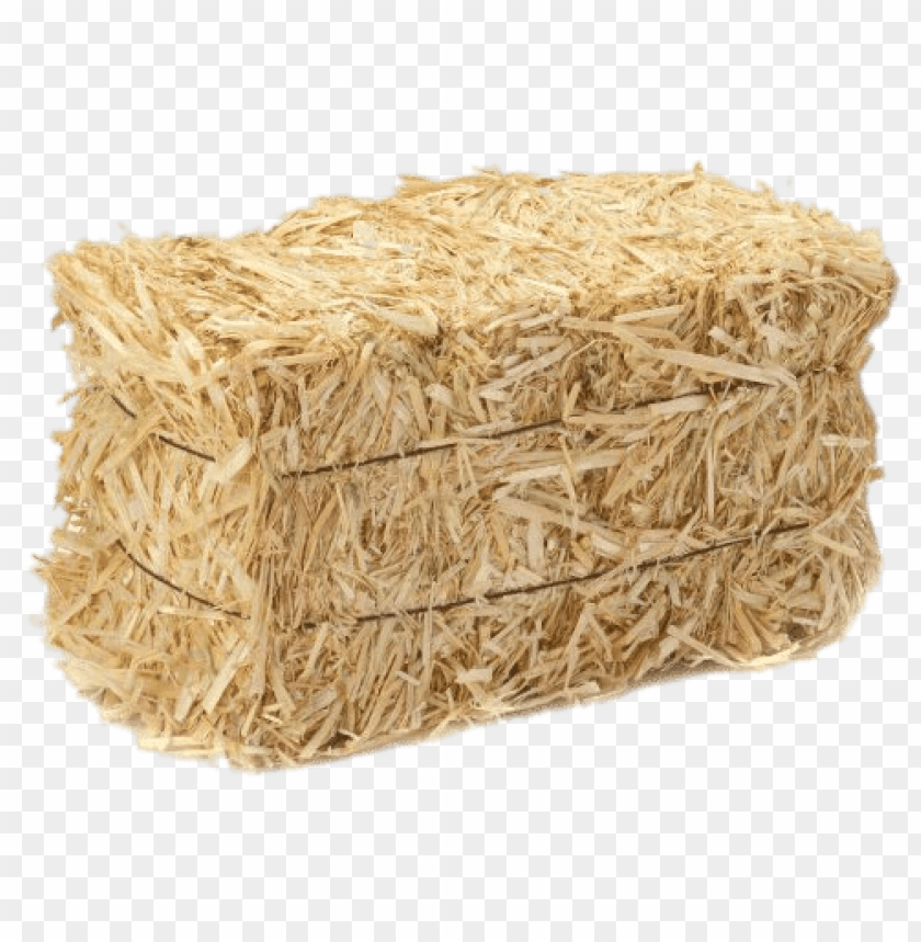 free PNG barley straw bale PNG image with transparent background PNG images transparent