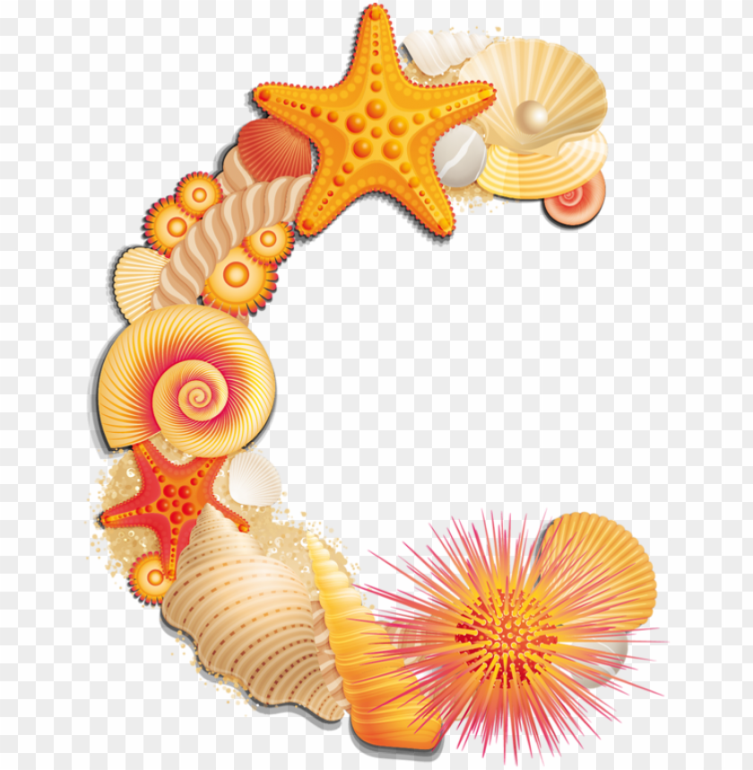 free PNG beach letter c - seashell b scrapbook alphabet PNG image with transparent background PNG images transparent