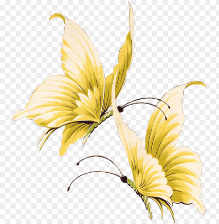free PNG beautiful butterfly by vanessyca71-d3d2dnf - gold butterfly transparent background PNG image with transparent background PNG images transparent
