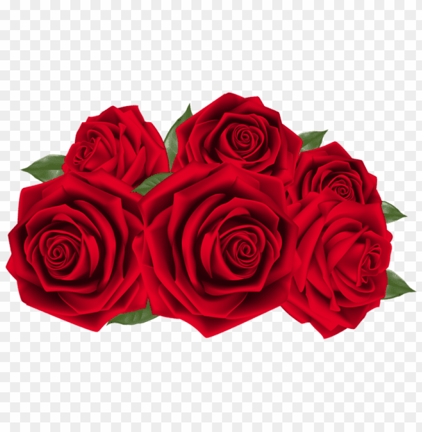 free PNG Download beautiful dark red roses png images background PNG images transparent