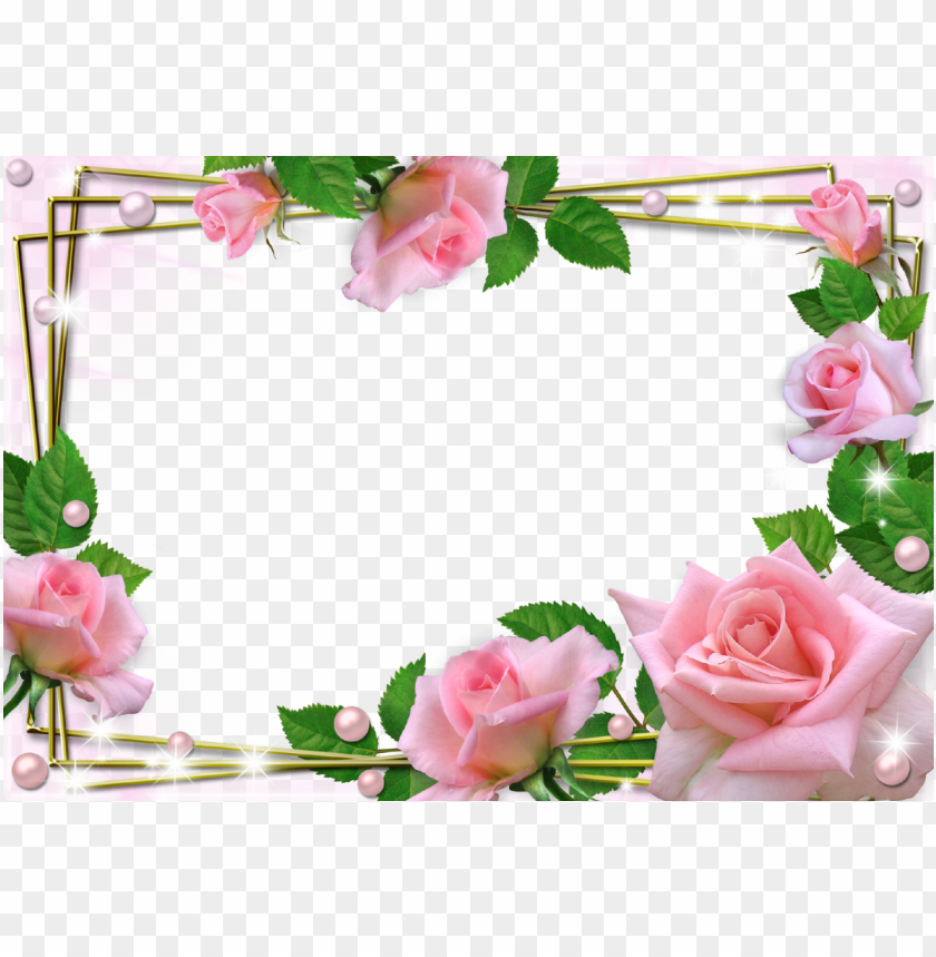 free PNG beautiful pink roses photo frame - beautiful flower frames and borders PNG image with transparent background PNG images transparent