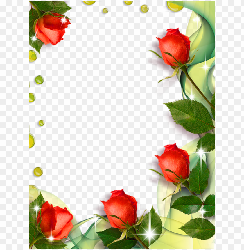 free PNG beautiful transpa photo frame with roses gallery yopriceville - flower beautiful frames and borders PNG image with transparent background PNG images transparent