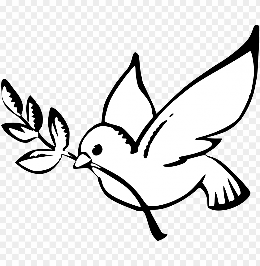 best drawing 2 dove outline cloud - peace dove PNG image with transparent background@toppng.com