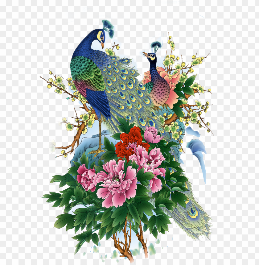 bird clipart, png format, peonies, peacock, clip art, - paintings of birds and flowers PNG image with transparent background@toppng.com
