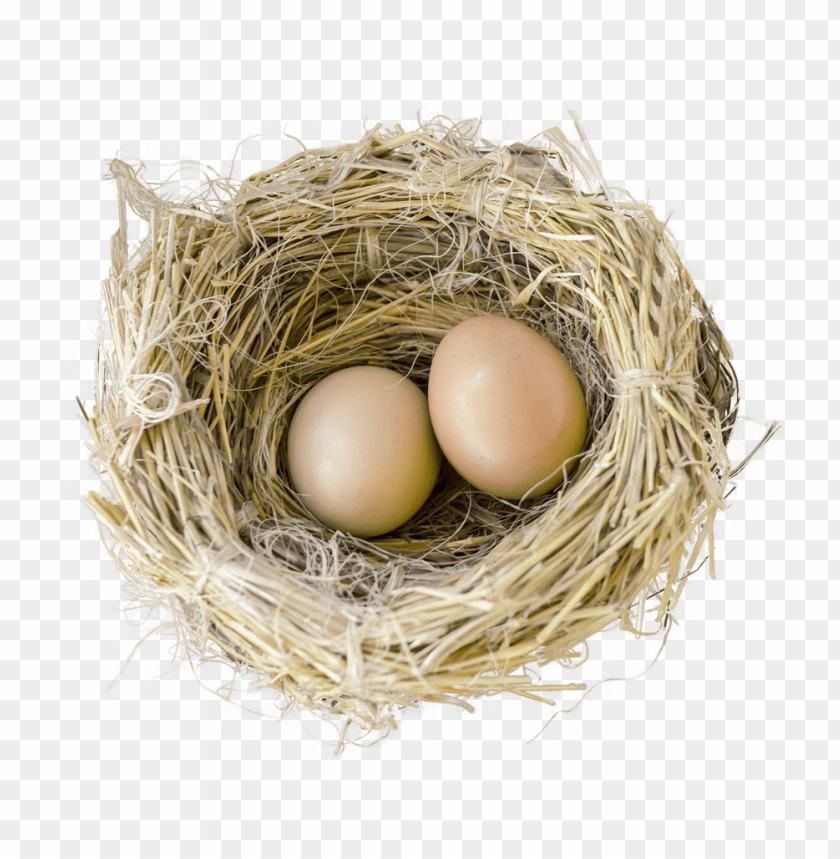 Download bird nest png images background@toppng.com