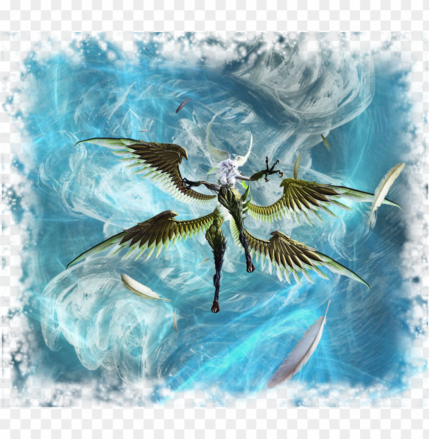 free PNG bird of prey PNG image with transparent background PNG images transparent
